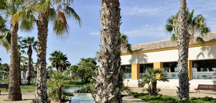 (c) Marjal Costa Blanca Camping & Resort